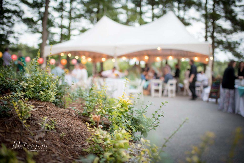 Wedding-Photography-Jo-Craig-389
